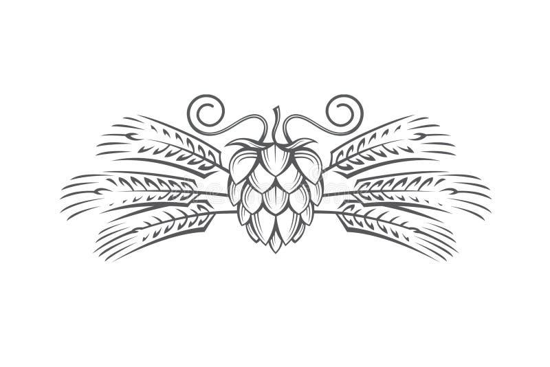 Image of hop and barley ear. Black illustration of hop and barley ear for brewing stock illustration