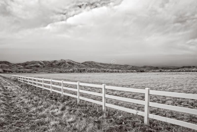 Image infrarouge d'un champ d'hiver en dehors de Boulder, le Colorado photos stock