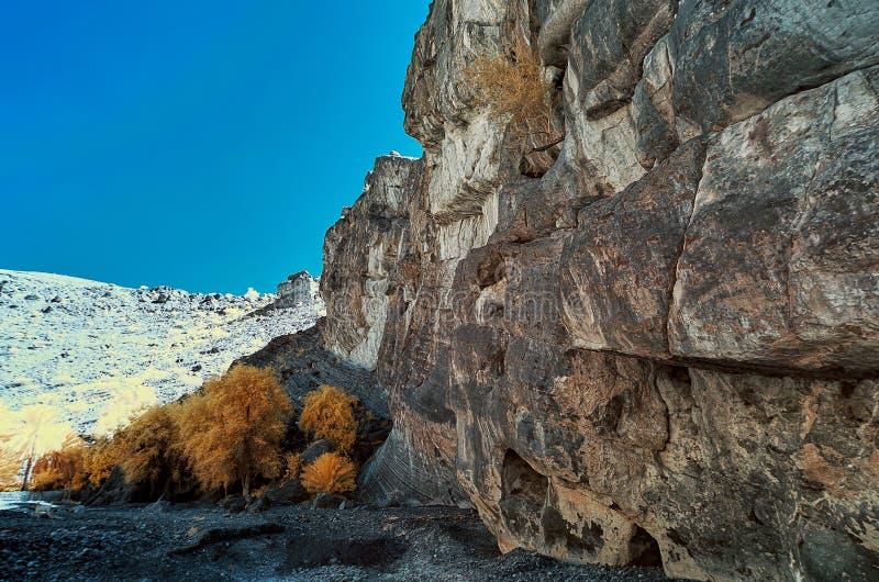 Image infrarouge d'une falaise avec un bloc des arbres sur une rivière sèche b photos libres de droits