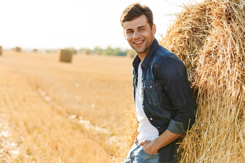 Image of joyful man 30s walking through golden field, and standing near big haystack during sunny day. Image of joyful man 30s walking through golden field and stock photos