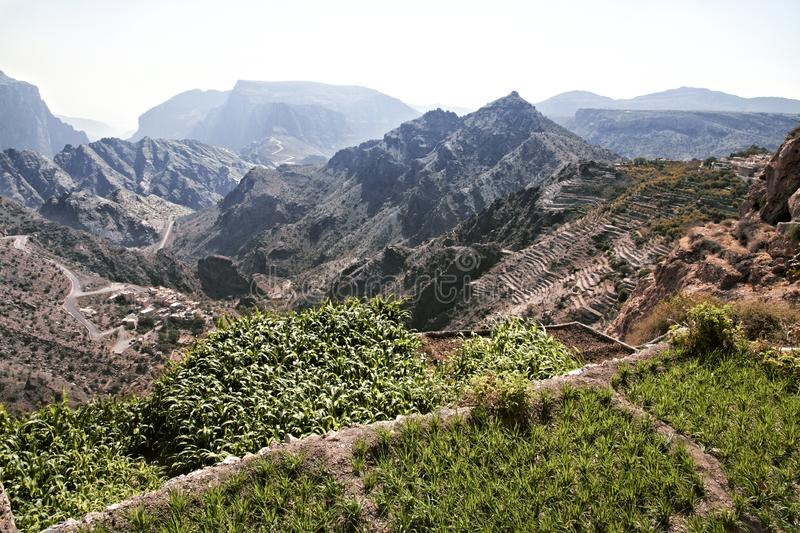 Landscape Saiq Plateau and terrace cultivation in Oman royalty free stock photos