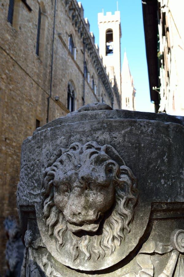 Image Of A Lion Stock Photos