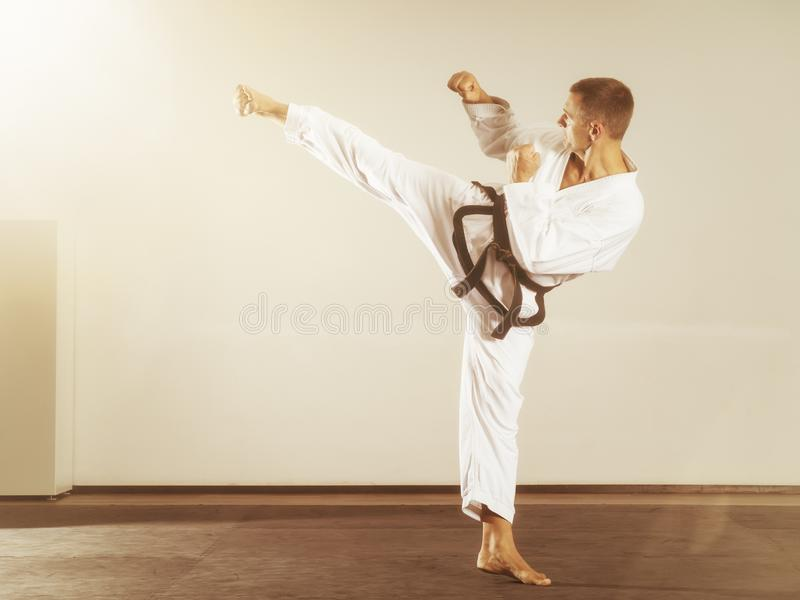 Martial arts master side kick stock photo