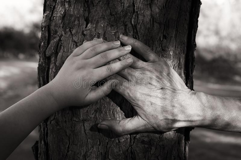 image of old woman and a kid holding hands together through a walk in the forest. Black and white photography. stock image