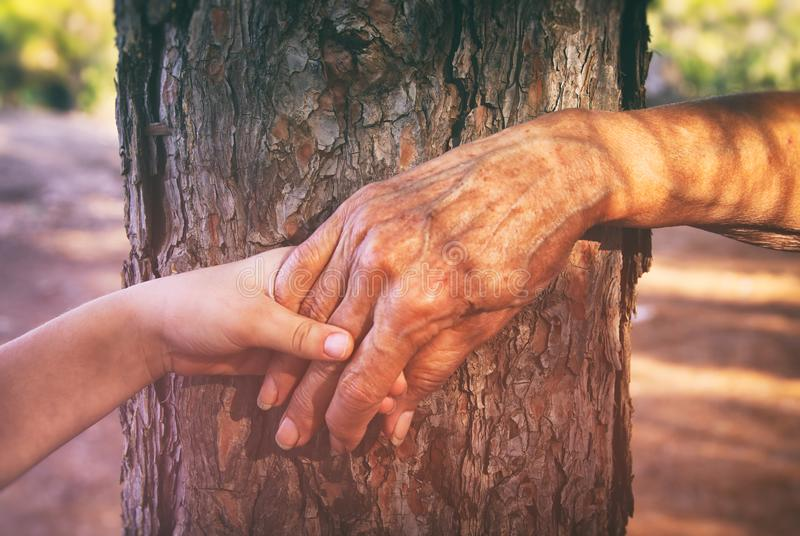 image of old woman and a kid holding hands together through a walk in the forest. royalty free stock photography