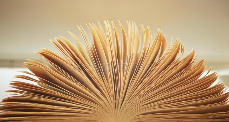 Image of an open old book with pages royalty free stock photography