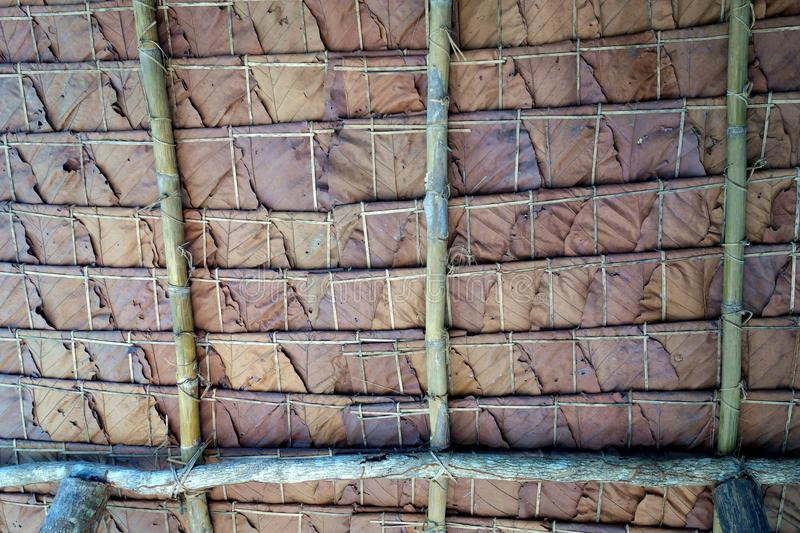 Jungle hut tiled roof of teak leaves stock images