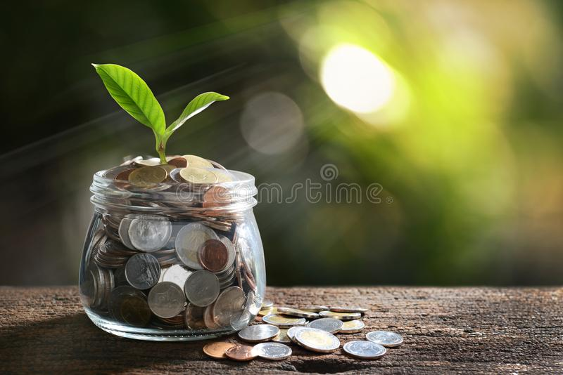Image of pile of coins with plant on top in glass jar for business economic concept stock images
