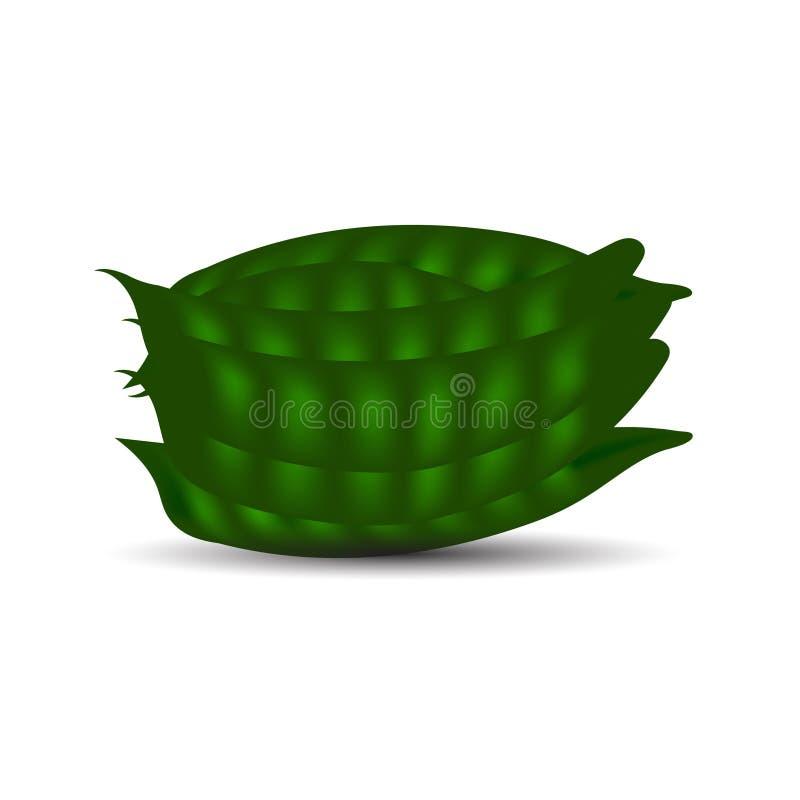 Image plate fraîche de vecteur de haricots image stock