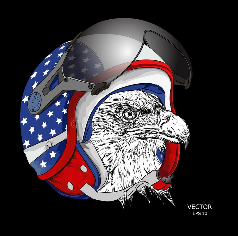 Image Portrait eagle in American motorcycle helmet. Vector illustration. An Image Portrait of eagle in American motorcycle helmet. A Vector illustration royalty free illustration