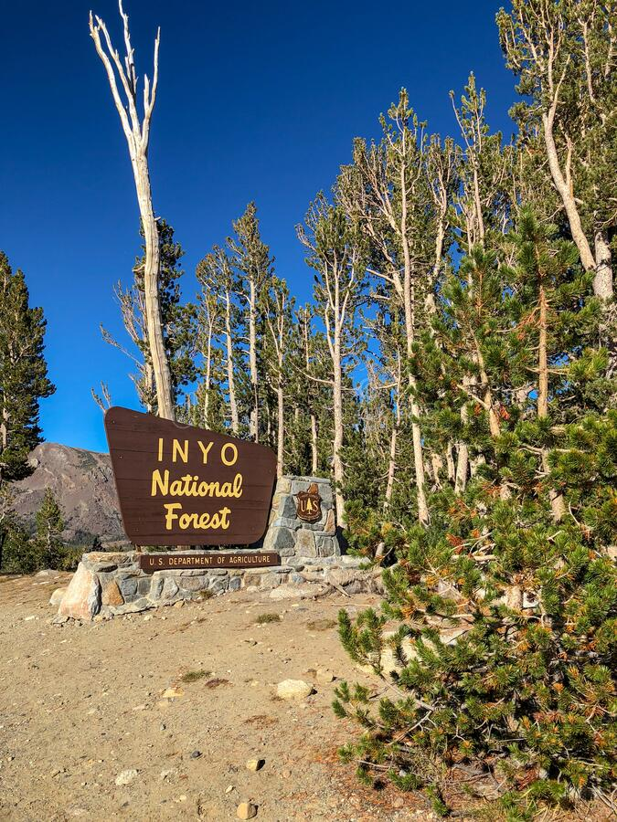 Inyo National Forest Sign Beautiful Sky and Trees. Image result for tree types in inyo national forest The Inyo National Forest is home to the Ancient stock image