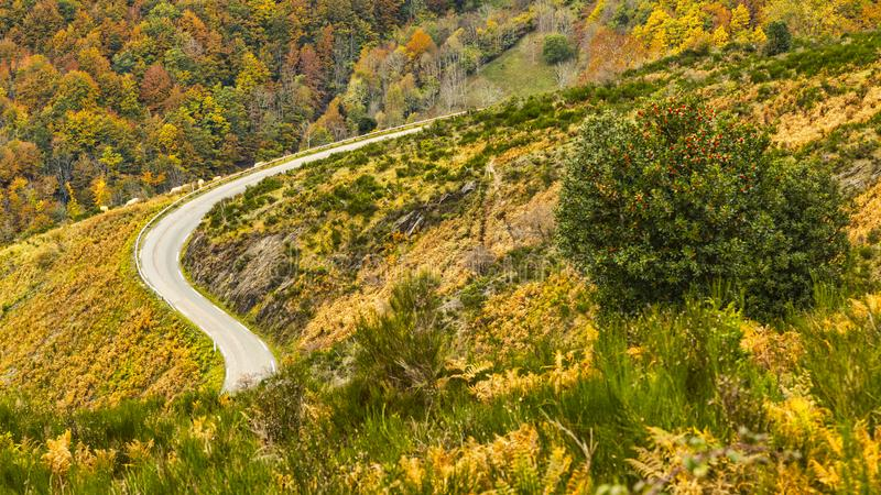 Road in Mountains in Autumn royalty free stock photo