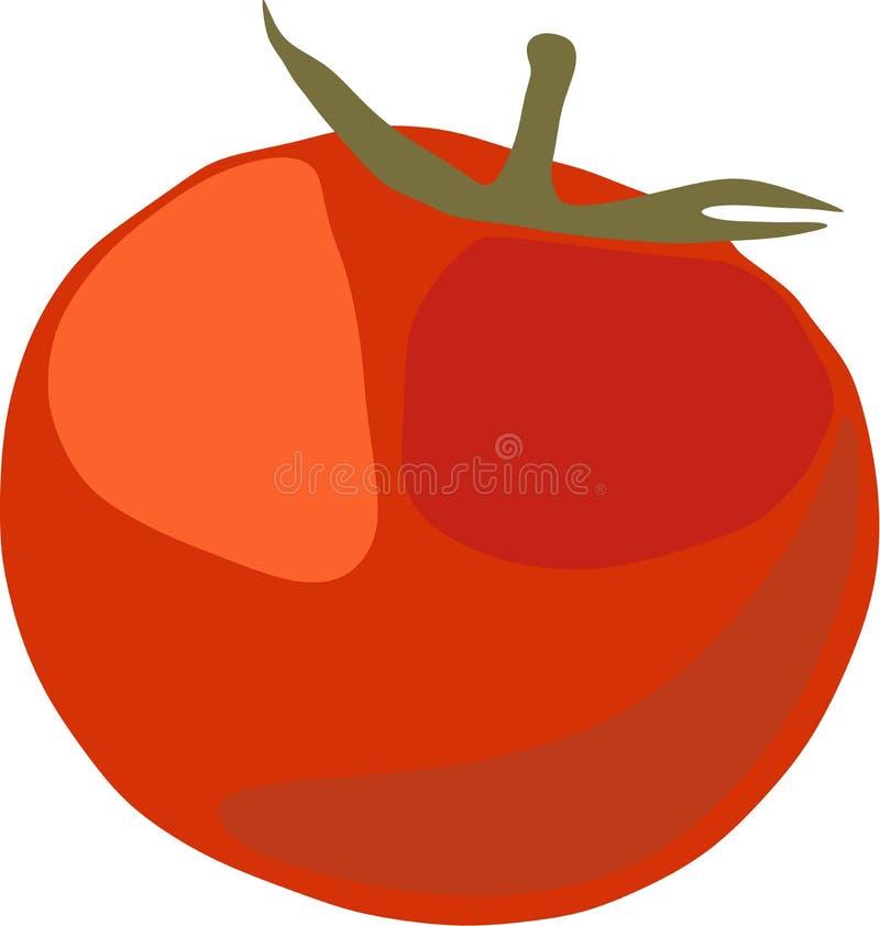 Image rouge de vecteur de tomate photo libre de droits