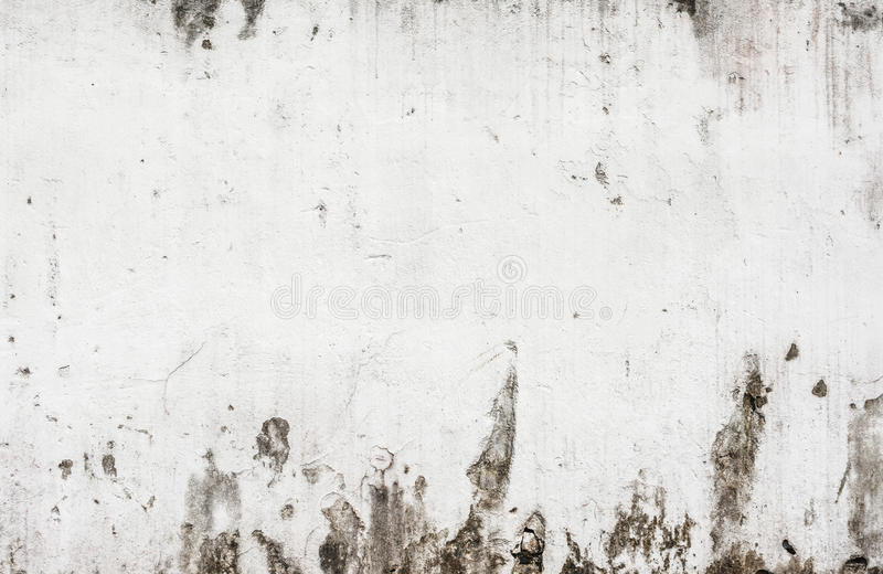 Image of rough white wall texture stock photography
