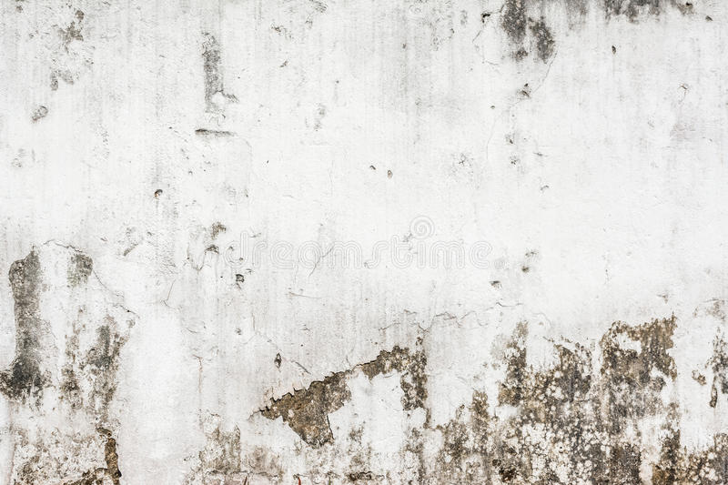 Image of rough white wall texture stock photos