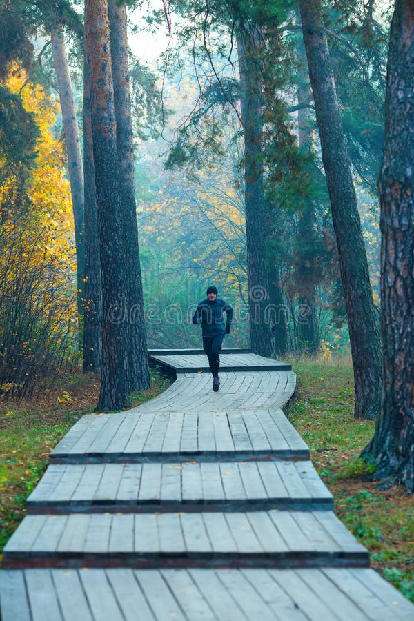 Image of running athlete in autumn park. Image of running athlete in autumn park in afternoon stock photography