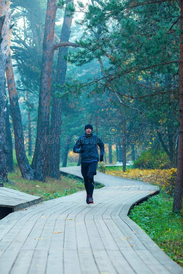 Image of running athlete in autumn park. Image of running athlete in autumn park in afternoon royalty free stock photography