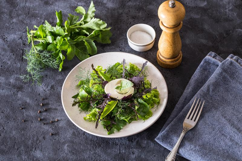 Image with salad. stock images