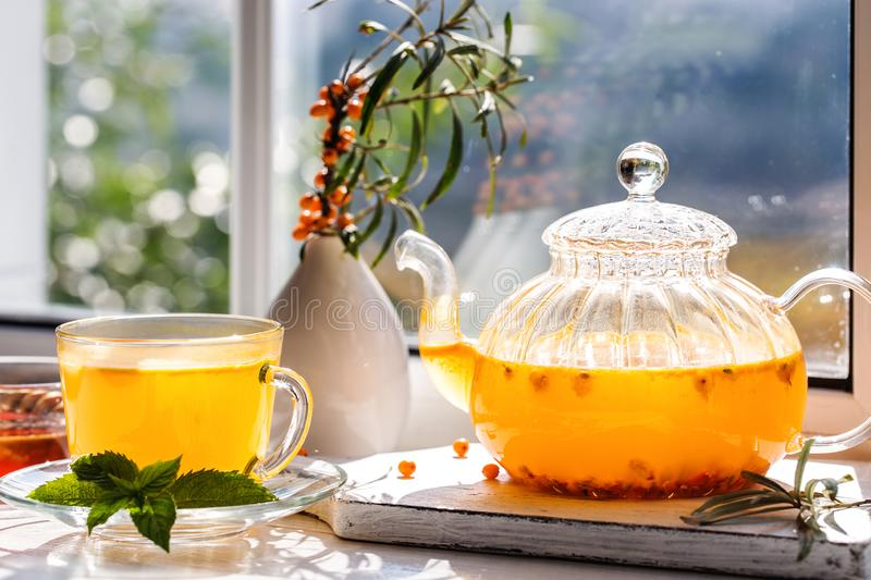 Image with sea buckthorn tea stock photography