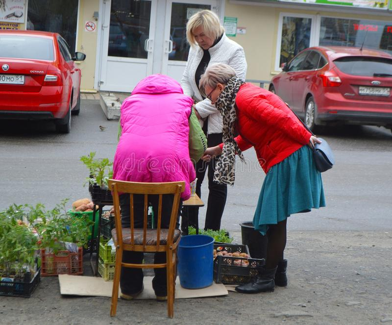 Selling seedlings at the Danilovsky market in the city of Kandalaksha.May 2019. Image of selling seedlings at the Danilovsky market royalty free stock images