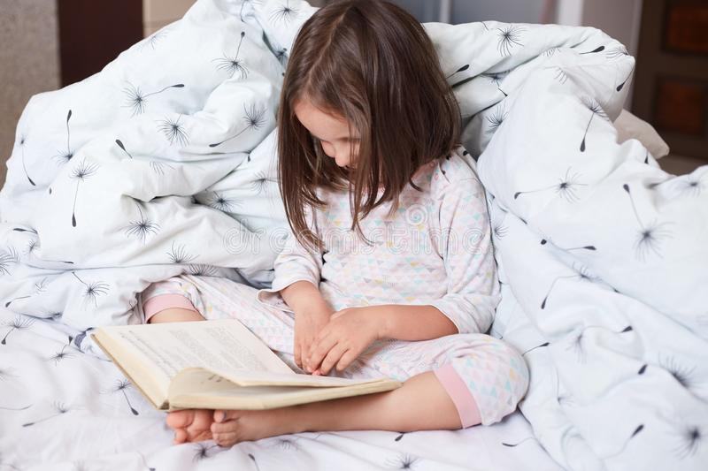 Image of serious preschooler girl reading book in bed, cute kid sitting under blanket with dandelion, darkhaired child reads fairy stock photo