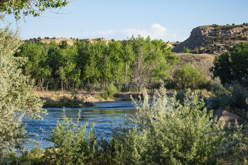 The Flow and Serenity of the Arkansas. Image shows the Arkansas River , as it gently streams by along the banks. Surrounded by mountains, and mesas, and all the royalty free stock photo