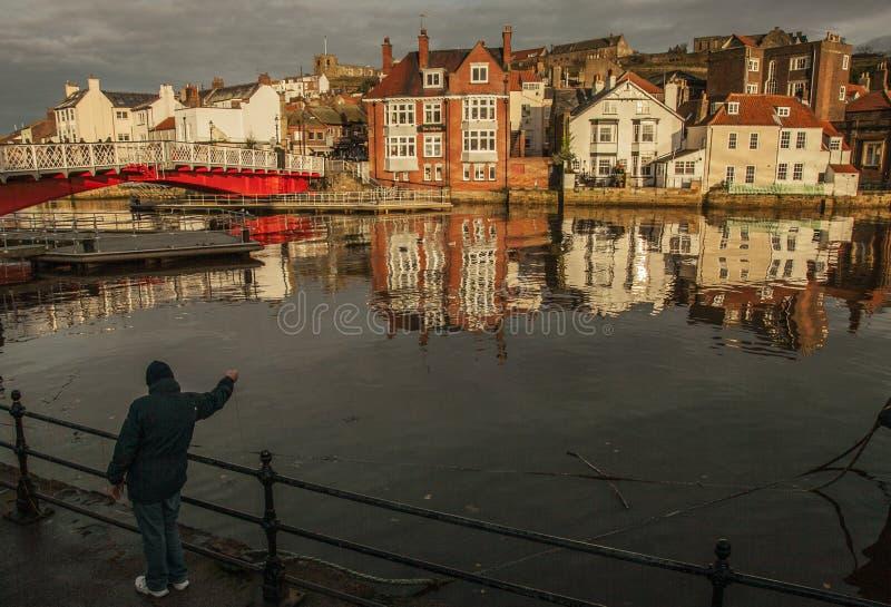 Whitby, Yorkshire, England - a man feeding seagulls. stock photos