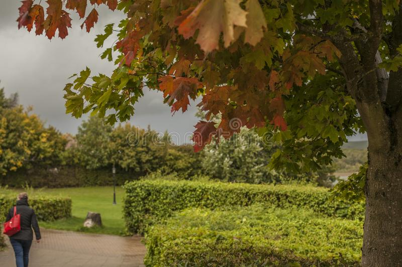 Autumn - parks in London. royalty free stock photo