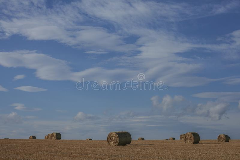 Scotland, the UK - bales of straw and blue skies. This image shows Scotland, the UK. It was taken on a sunny day in August 2016. We can see bales of straw lying royalty free stock photography