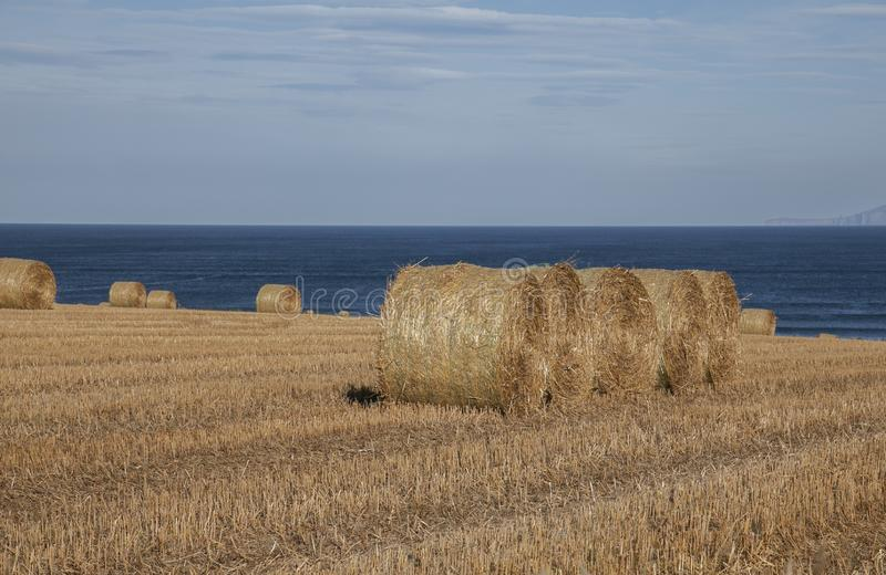 Scotland, the UK, Europe - bales of straw and blue skies. This image shows Scotland, the UK. It was taken on a sunny day in late summer 2016. We can see bales royalty free stock photography