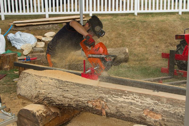 A log being planked using a chain saw. stock image