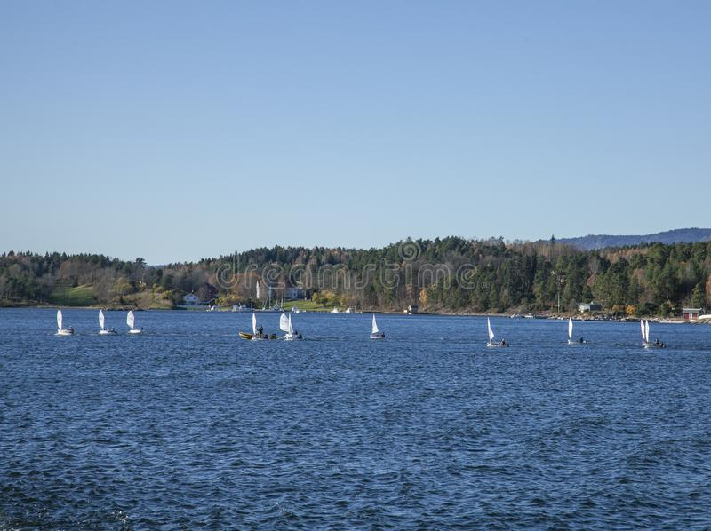 Sunny day in Oslo, Norway - white sails and blue waters. royalty free stock image