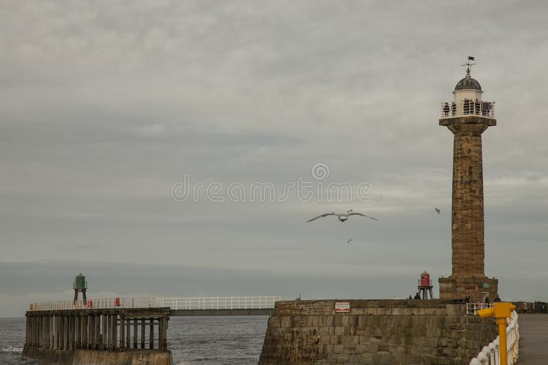 Whitby, Yorkshire - the waterfront - people and seagulls. stock photos