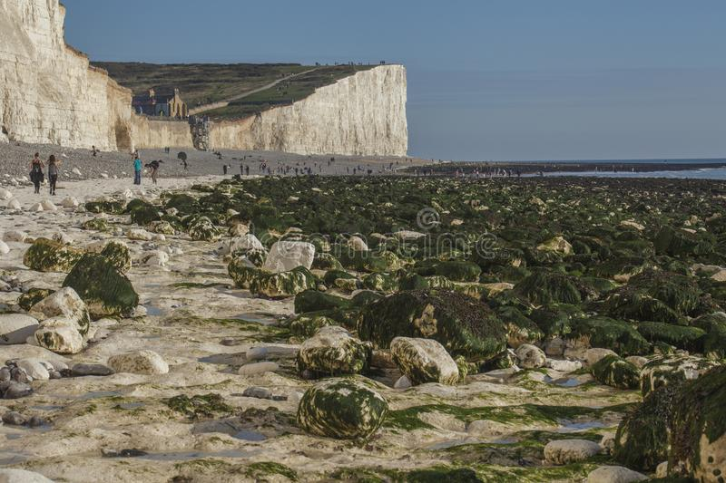 Seven Sisters, England, the UK; white beach, blue skies and green seaweeds. This image shows a view of Seven Sisters, England, the UK - cliffs and skies. It was royalty free stock images