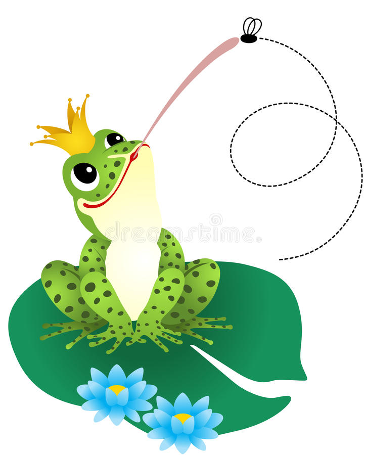 Groda som fångar en fluga vektor illustrationer