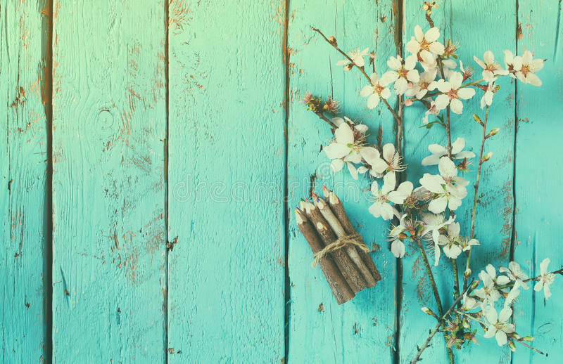 Image of spring white cherry blossoms tree next to wooden colorful pencils on blue wooden table. vintage filtered image.  royalty free stock photos