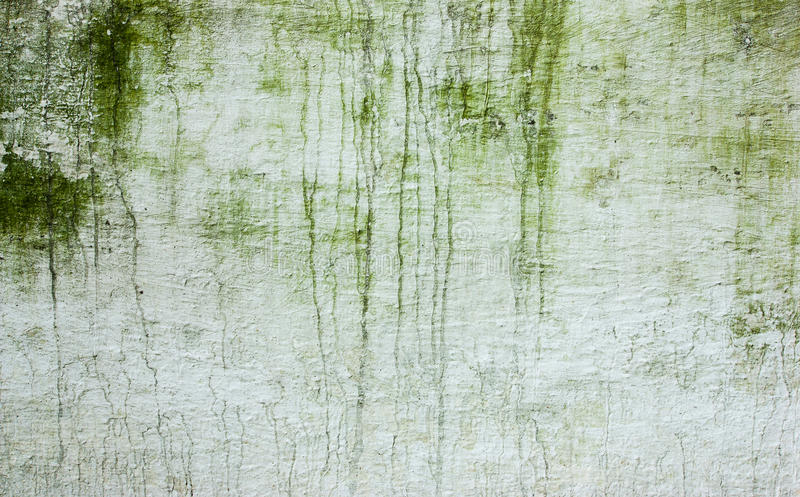 Image of the Stain on the wall. Wall with green stains and dirt on the surface stock photo