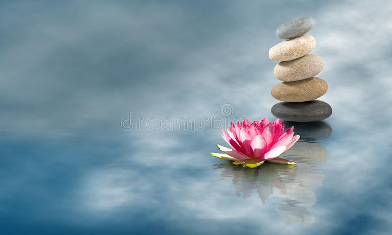 Image of stones and lotus flower on the water close-up. Image of stones and lotus flower on the water closeup royalty free stock photography