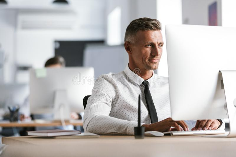 Image of successful employee man 30s wearing white shirt and tie. Sitting at desk in office and working at computer royalty free stock image
