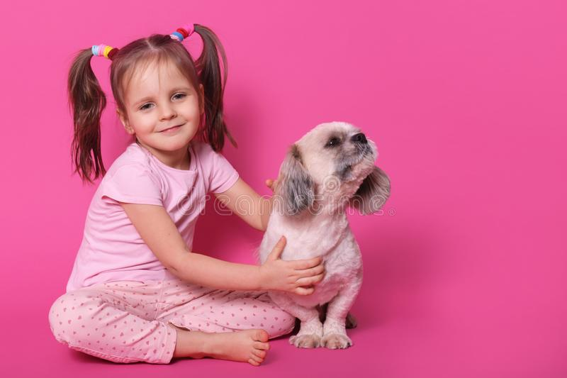 Image of sweet cute little child with two funny pony tails, being in good mood, spending free time with pet, holding it close, royalty free stock images