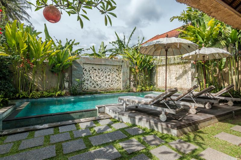 Beautiful and tropical swimming pool royalty free stock photo