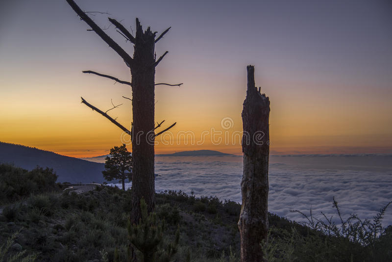 Image taken at the Mount of la orotava royalty free stock photography