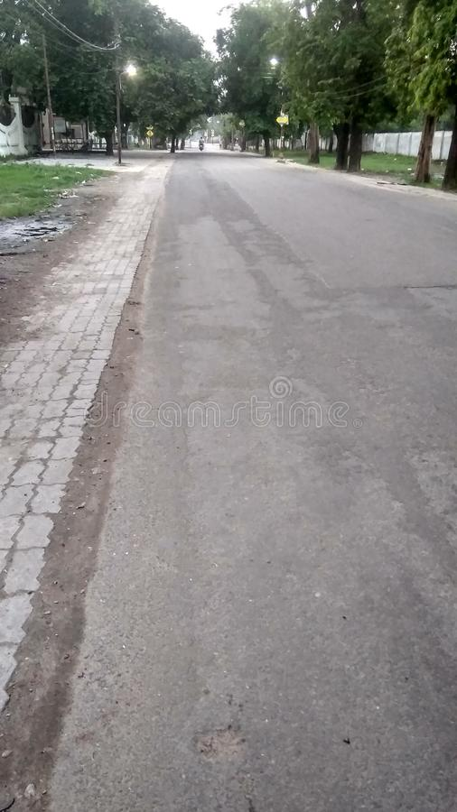 Image of tree with road in morning time. Image of trees with road in the morning looking beautiful and seems healthful stock photo