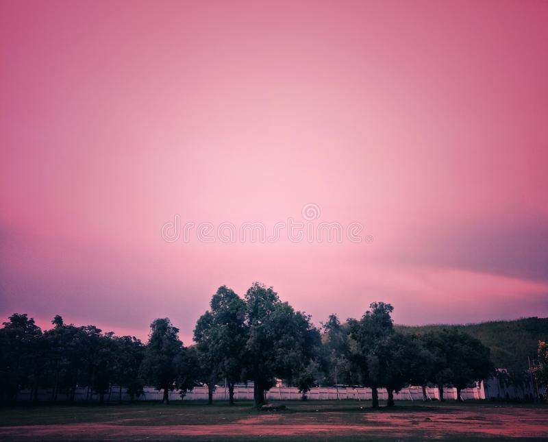 Image of trees with sky. royalty free stock image