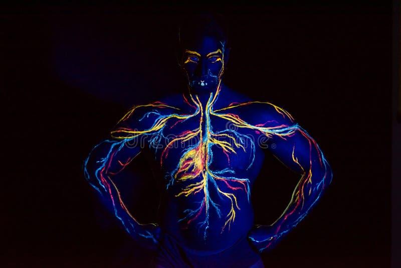 Image UV de l'art corporel du système circulatoire sur le corps d'un homme adulte Sur la poitrine d'un athlète musculaire, veines photo libre de droits