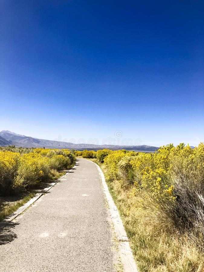Cement Trail Into Mono Lake East Area stock photos