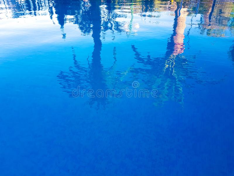Image where it is possible to be observed in the surface of the water of a swimming pool two reflected palms. Benidorm, Spain. Tree blue summer travel luxury royalty free stock images
