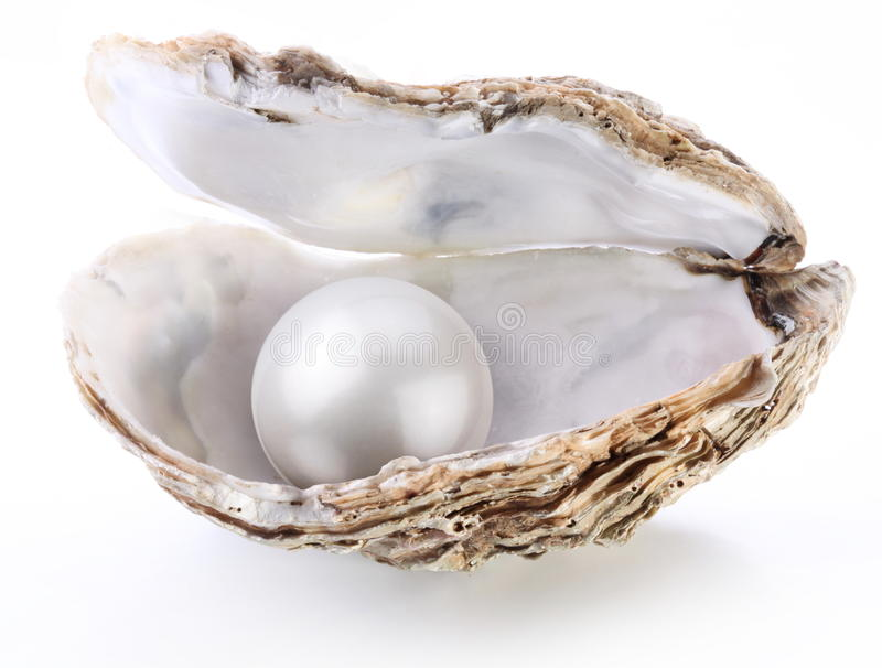 Download Image Of A White Pearl In A Shell On A White Stock Image - Image: 17888203