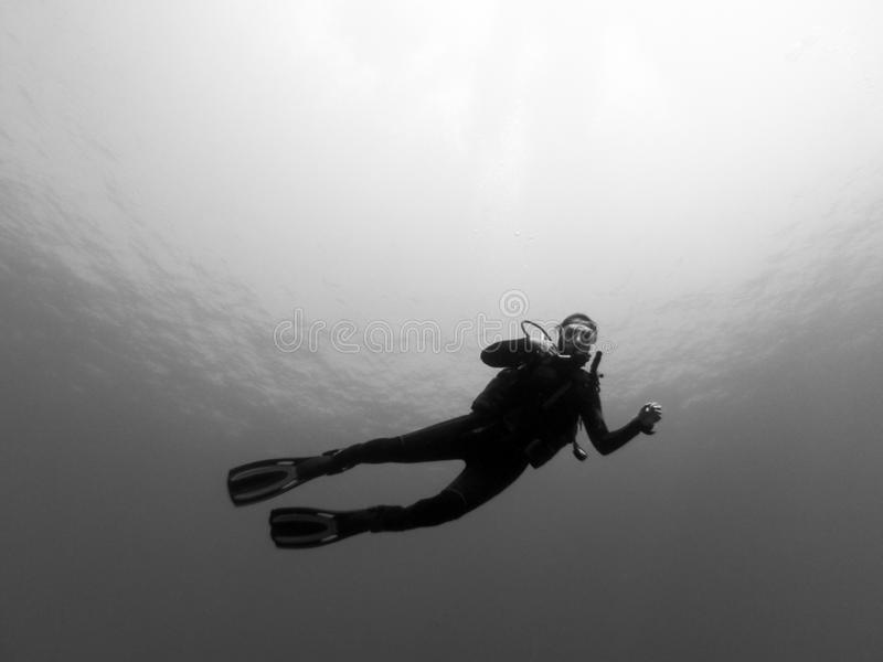 Image of a woman diver enjoying a dive in the waters of the Canary Islands royalty free stock photos