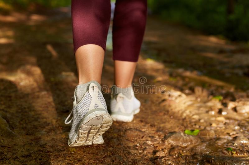 Image of woman`s legs going on ground in field or forest, woman walking along dusty road in maroon leggins and gray sneakers,. Female spending time with friends stock image